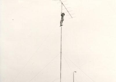FD 1976-016