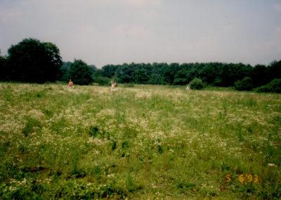 FD 19930000